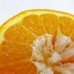 ส้มของจังหวัดเอะฮิเมะ ประเทศญี่ปุ่น